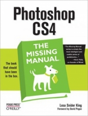FLASH CS4 - O Manual que faltava
